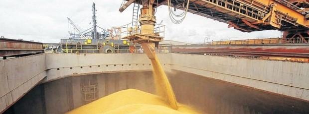 """Exportadores: """"Las operaciones se hicieron dentro del marco de la ley"""""""