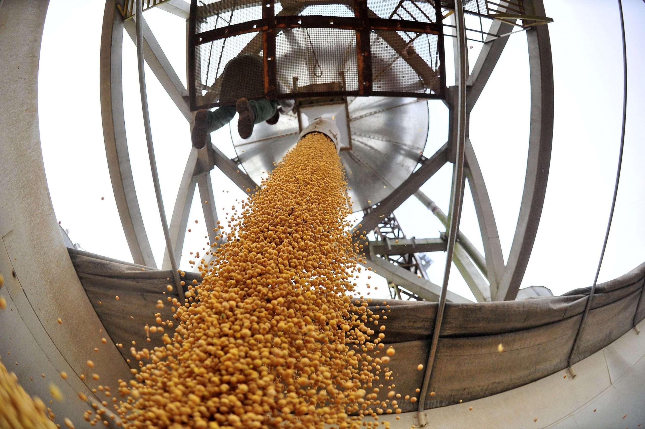 Continúa la tensión entre los puertos privados y los gremios a cargo de la recepción de los granos