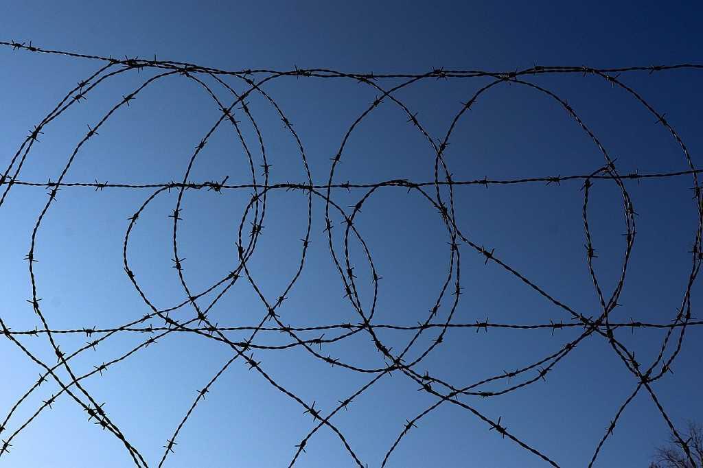 Cepo del cepo: golpe de gracia al maltrecho comercio internacional argentino